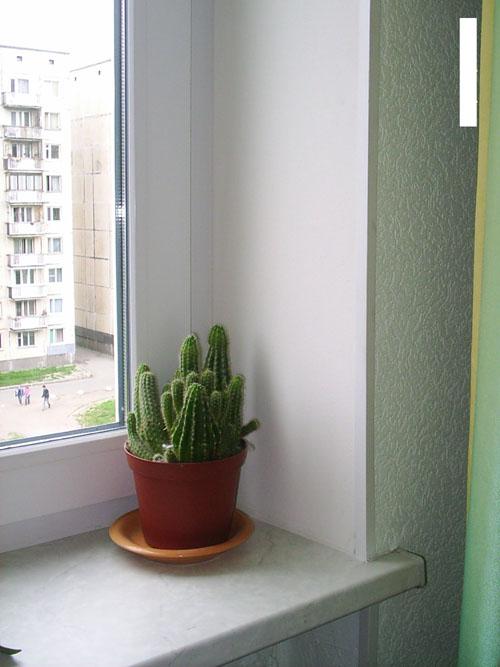 http://www.okna55.ru/fotos/otkosnew.jpg